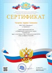 Сертификат персонального сайта Солнечный свет 2021